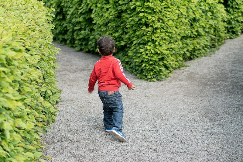 Child_Entering_Maze.jpg